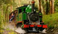 Train_with_green_loco__640x480-198x117